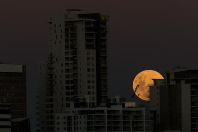 La llamada superluna azul, en lo alto del cielo de la ciudad de Perth, Australia.
