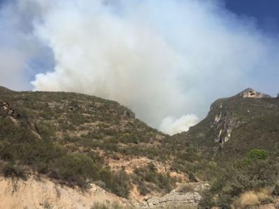 Un total de 400 hectáreas fue el saldo que dejó el incendio que se registró la tarde de hoy en la Sierra Zapalinamé en Saltillo, el cual se estima fue provocado por unos excursionistas.