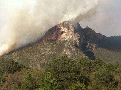 También se solicitó la ayuda de helicópteros al estado de Nuevo León y a la Comisión Nacional Forestal.