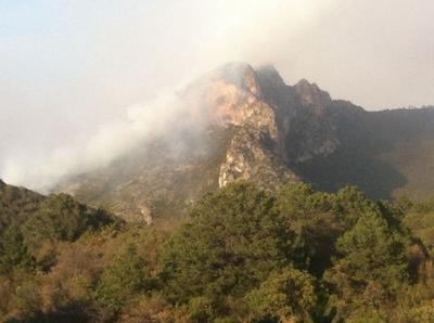 El Gobierno del Estado informó que al momento del incendio, se reportó una brigada de más de 100 personas que realizaron diversas labores de extinción y control.