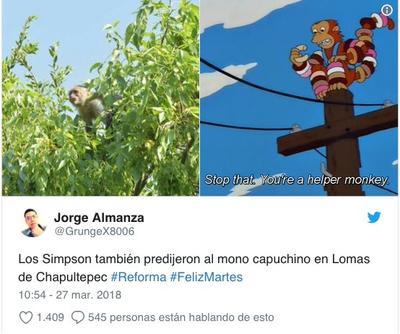 """Fue dado al operativo y unas """"ligeras similitudes"""" con la serie de Los Simpsons, que usuarios compartieron imágenes del mono en sus redes sociales."""