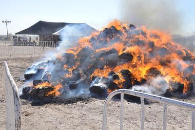 Cientos de kilos de drogas, decomisadas durante el año, fueron quemadas este día.