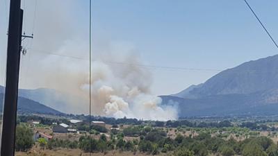 La Comisión Nacional Forestal (Conafor) señaló a través de su cuenta de twitter que al lugar se movilizó su personal, así como brigadas comunitarias y voluntarios para atender el incendio.