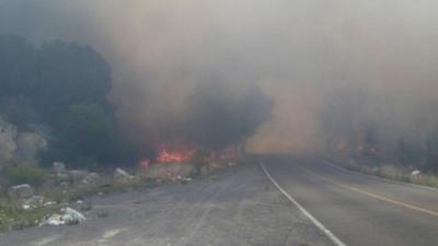 De acuerdo al Municipio de Arteaga, al momento se encuentran las autoridades en el lugar para realizar trabajos de combate y control.