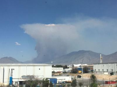 """Fue a las 15:03 horas cuando se reportó el incendio en la comunidad """"Las Copetonas""""."""