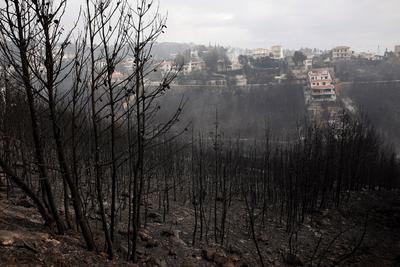 Por ahora se desconocen las causas de estos incendios, un total de 47 en las últimas 24 horas en toda Grecia, pero se sospecha que los de la región capitalina de Atica podrían haber sido intencionados.