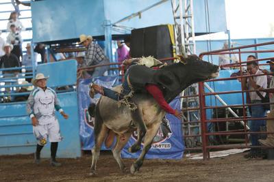 Vive Durango la adrenalina del rodeo