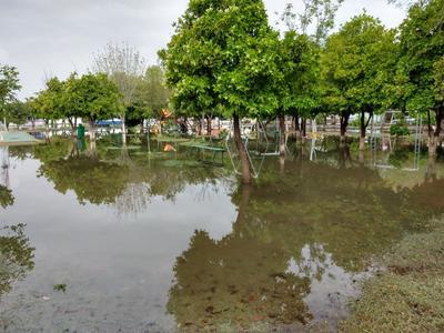 Incluso algunos parques no se quedaron atrás y sintieron los efectos de las lluvias.