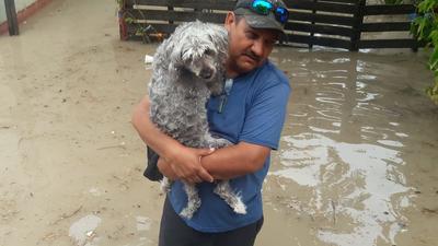 Ciudadanos no se olvidaron de sus mascotas tras las lluvias registradas en Piedras Negras.