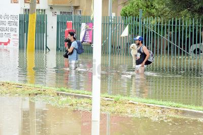 Jóvenes salvaron a las mascotas de la inundación.