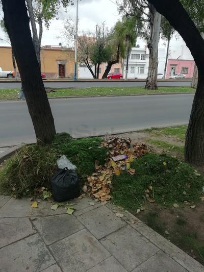 Paseo Las Alamedas. Después de realizar los trabajos de Jardinería, las autoridades suelen dejar la basura recolectada, lo que puede ocasionar que se disperse con la lluvia que se presente. (EL SIGLO DE DURANG0)