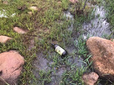 Se logró hacer una primera limpieza de los alrededores de esta presa pero se requiere otra visita para tratar de dejar lo más limpio que se pueda esa zona.