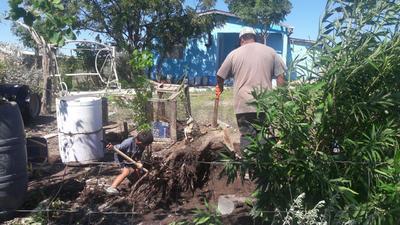 Se trabaja en remover algunos árboles que fueron derribados por los fuertes vientos, además con el sector salud para la revisión de los adultos mayores y menores de edad.