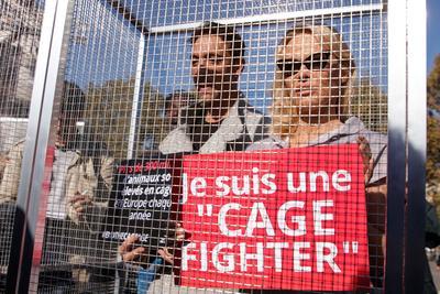 Según el Eurobarómetro de 2016, un 89% de los ciudadanos encuestados se mostraron favorables a una legislación europea que garantizase el bienestar de los animales criados con fines comerciales.
