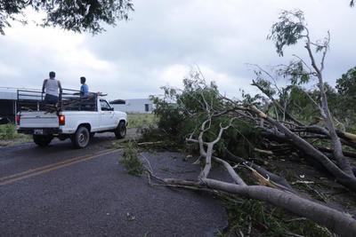 """""""Willa"""" derribó árboles y postes de energía eléctrica con la posterior suspensión del servicio, desbordó ríos y arroyos que inundaron e incomunicaron varias poblaciones en los estados de Sinaloa, Nayarit y Jalisco."""