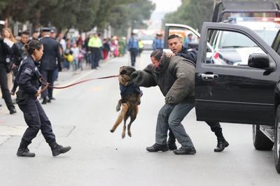 Se hicieron presentes elementos policiacos con agentes caninos.