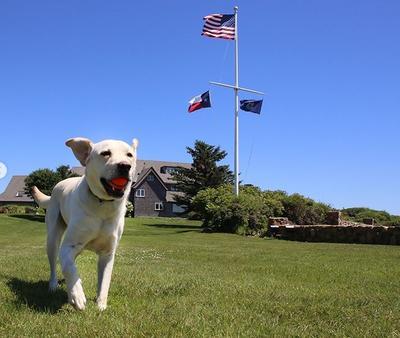"""El can fue nombrado en honor al piloto Chesley """"Sully"""" Sullenberger, quien en 2009 aterrizó un avión comercial de pasajeros en el río Hudson de Nueva York, acción que le salvó la vida a las 159 personas a bordo de la aeronave."""