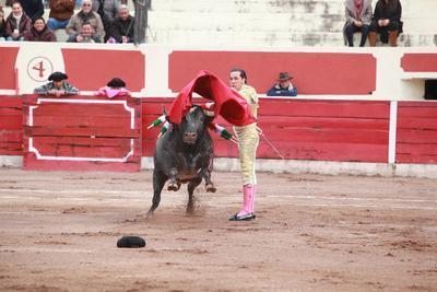 Para con ello llevarse dos apéndices y consagrarse como el gran triunfador de la Corrida de Año Nuevo en Durango.