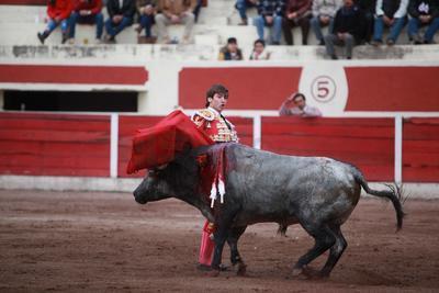 """Primero a """"Don Nuncio"""", un toro de 480 kilos al cual supo llevar muy bien en una faena por derechazos."""