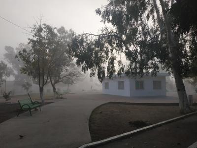 Fue desde la madrugada que se empezó a apreciar la neblina en algunas zonas de la Comarca Lagunera, acompañada de una temperatura mínima de 7 grados centígrados.