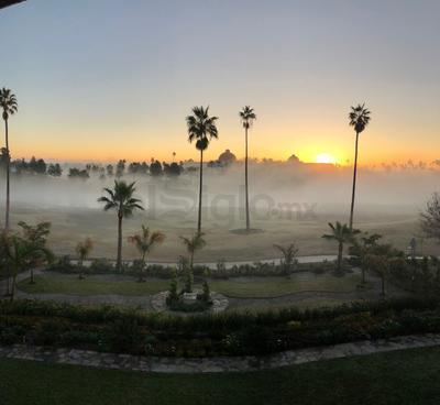 Amanecer lagunero con neblina.