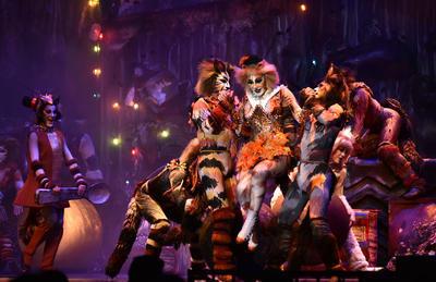 Cats toma la noche de Torreón y los Jélicos maúllan
