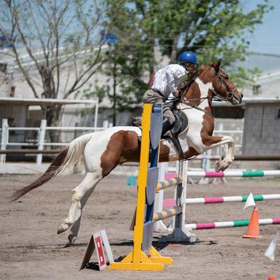 Tercer Concurso de Salto Ecuestre 2019, organizado por la Asociación Ecuestre de La Laguna y celebrado en el Club Hípico La Cabaña, en Gómez Palacio Durango