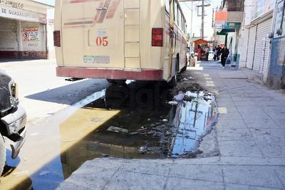 Entre aguas negras, es donde se estacionan los camiones y algunos comerciantes ambulantes, las cuales expiden fétidos olores. Algunos otros charcos que se aprecian son de fugas de agua potable que no reparan.