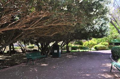 La entrada al parque es gratuita pero se prohíbe introducir bebidas alcohólicas, transitar en bicicleta, entrar con mascotas, portar armas, encender fuego, acostarse en las bancas y realizar actos inmorales.