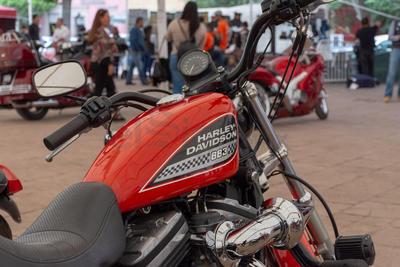 Este miércoles por la noche se rifará una Harley Davidson.