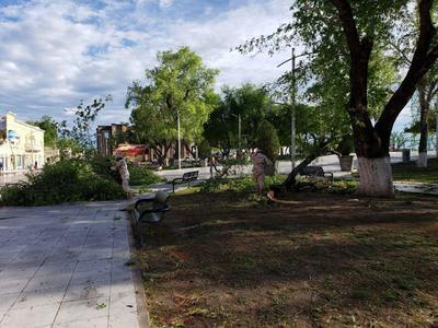 Dejó a su pasó una gran cantidad de árboles, ramas, bardas y cables caídos, debido a la presencia de vientos huracanados.