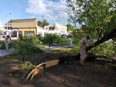 En el caso del municipio de Piedras Negras, durante las primeras horas de este domingo, también se reportaron fallas en el suministro de energía eléctrica.