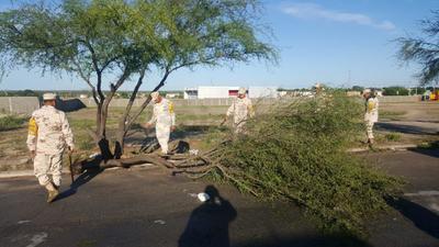 Las autoridades de este municipio fronterizo dieron a conocer que la citada tormenta dejó precipitaciones pluviales de tres cuartos de pulgada.