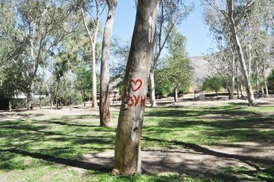 Daños. La autoridad pide a los visitantes no dañar los árboles en el parque, así como depositar la basura en su lugar para mantenerlo limpio.