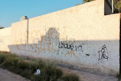La mayoría de las bardas de la colonia se encuentran llenas de grafiti, obligando a los vecinos a pintar el espacio para retirar las rayas. Sin embargo al poco tiempo regresan los daños.