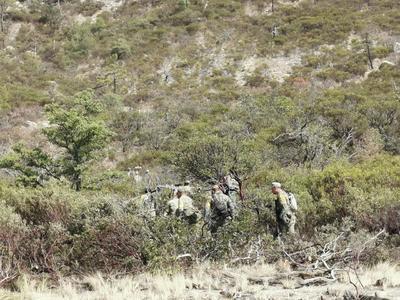 El fuego que consumió más de 20 mil hectáreas de pastizales, arbustos y zonas arboladas ya fue controlado.
