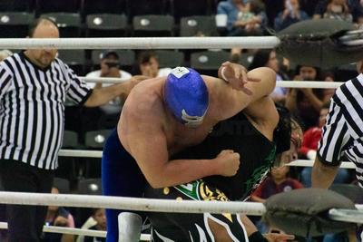 La lucha terminó con un triple toque de espaldas.