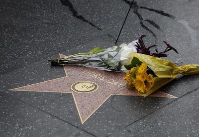 Se apaga la estrella de Doris Day