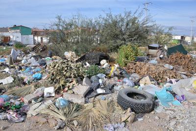 Se colectan en promedio 530 toneladas de basura por día y se estima que 1.51% son podas y residuos vegetales que pudieran ser transformadas en composta, pero no existen programas encaminados a ello.