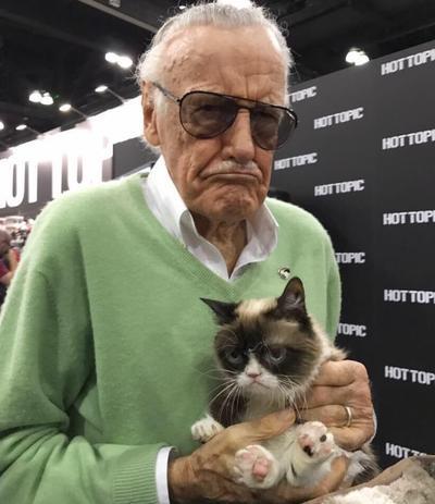 Muere Grumpy, el famoso gato de los memes