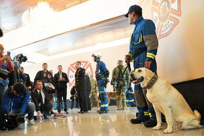 La perrita se ganó el cariño y el reconocimiento de miles de mexicanos.