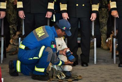 La Marina destacó la labor de la veterana adscrita al Departamento de Control Canino de la dependencia.