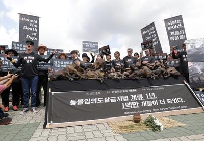 La protesta se realizó cerca de la Asamblea Nacional de Seúl.