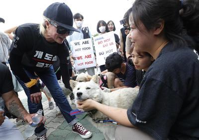 Muchos surcoreanos creen que comer carne de perro o caldo de pollo les da la fuerza para superar el calor.