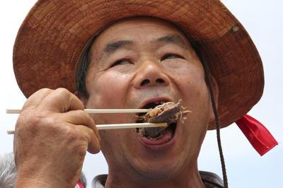 Criadores de perros que los venden a restaurantes llevaron carne de perro al vapor y la comieron con kimchi.