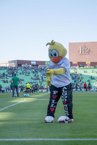 El pollo  Santos vs FC  juego correspondiente a la jornada 3 de la apertura 2019 de la Liga MX en TSM Oficial - Sunday 28 de July de 2019 18:45h