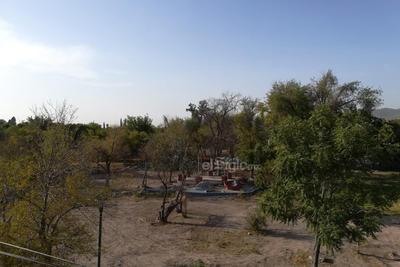 Seco. Los problemas que atraviesa la colonia Torreón Jardín han impactado a su plaza principal con el cambio de verde a café.