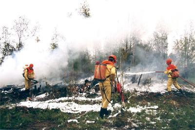 La emergencia se debe a incendios.