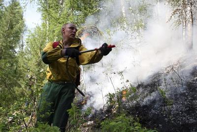 Los incendios forestales en Rusia se están extendiendo.