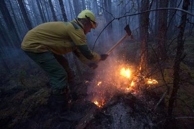 Los incendios no han alcanzado zonas pobladas.